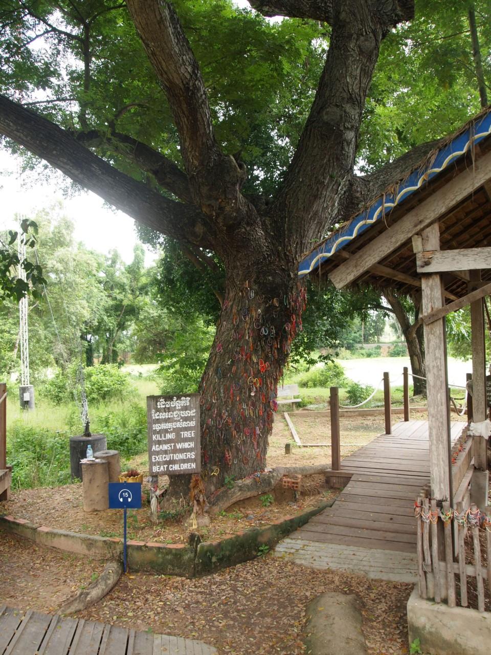 An diesem Baum wurden mehrere Hundert Kleinkinder totgeschlagen.